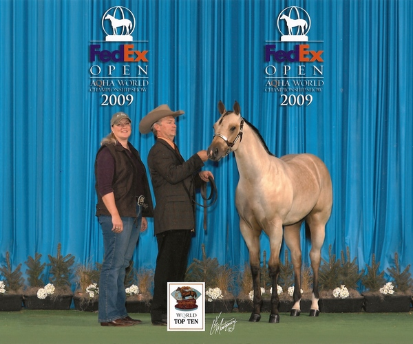 2009 AQHA World Show - 6th place in Open!