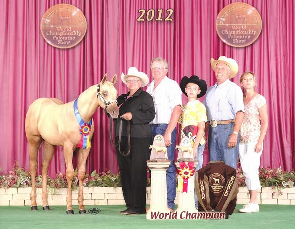 CKure - 2012 PHBA World Champion Weanling Gelding