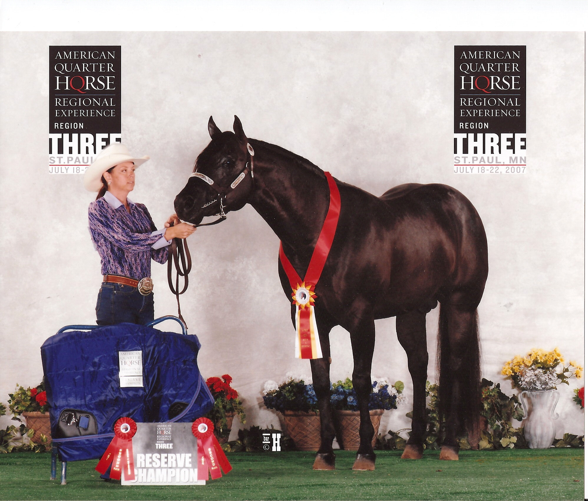 Repercussions - 2007 AQHA Regional Experience Reserve Champion!
